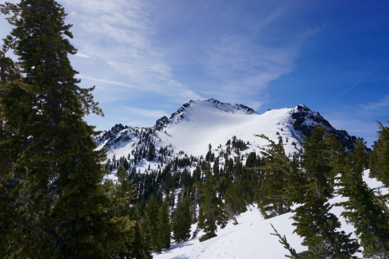 Tallac's Summit Snowfield